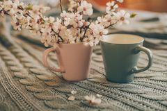 Cup of tea with spring flower cherry blossom on a wool plaid background. Vintage style Royalty Free Stock Images