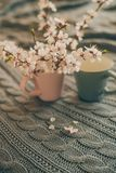 Cup of tea with spring flower cherry blossom on a wool plaid background. Vintage style Royalty Free Stock Photography