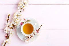 Cup of tea and spring flowers. royalty free stock image
