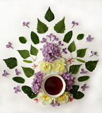 Cup of tea with spring flowers on white background. royalty free stock photos