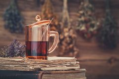 Cup of tea on stack of old books. Hanging bunches of medicinal herbs on background. stock image
