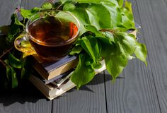 Cup of tea standing on old books with green plant.