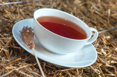 Cup of tea on straw background Stock Image