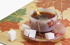 Cup of tea and sugar pieces Royalty Free Stock Photography