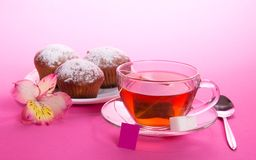 Cup of tea and sugar on saucer, teaspoon. Cup of tea and sugar on a saucer, a teaspoon, on a pink background Stock Images