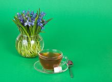 Cup of tea and sugar on saucer, teaspoon, vase. Cup of tea and sugar on a saucer, a teaspoon, a vase with squills, on a green background royalty free stock photo