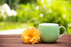 A cup of tea in a sunny garden on a wooden table. A round mug with floral tea and aster on the background of a summer garden. Green blurred background. Copy stock photo