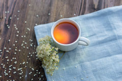 Cup of tea on table with herbs Stock Photos