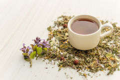 Cup of tea on table with herbs Royalty Free Stock Photography