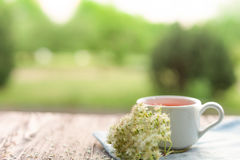 Cup of tea on table with herbs Royalty Free Stock Photos
