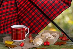 A cup of tea on the table under an umbrella. Tea with marshmallows on an old table under a checkered umbrella Royalty Free Stock Photography