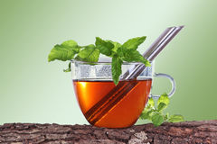 Cup of tea with tea strainer Stock Images