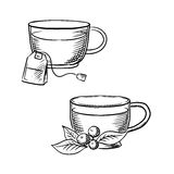 Cup of tea with teabag and cowberry sketches Royalty Free Stock Images