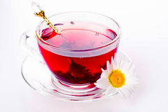 Cup of tea with teabag over white Royalty Free Stock Photo