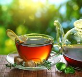 Cup of tea and teapot. royalty free stock images