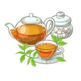 Cup of tea, teapot and sugar bowl. Illustration with cup of tea, teapot,  sugar bowl  and tea leaves on white background Stock Photo
