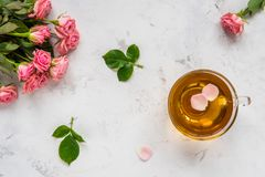 Cup of tea and tender pink roses on a white background copy spac. E Royalty Free Stock Photos