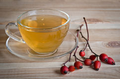 Cup of tea and twigs near wild rose Royalty Free Stock Photography