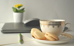 Cup of tea and vanilla French macaroons with yellow plant Stock Image