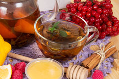 Cup of tea and various components Royalty Free Stock Images