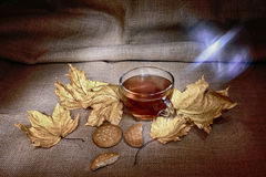 Cup of tea with varm kukies and autumn leafage HDR Royalty Free Stock Photo