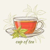 Cup of tea. Vector illustration with cup of tea on color background Royalty Free Stock Photography