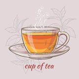 Cup of tea. Vector illustration with cup of tea on color background Royalty Free Stock Images