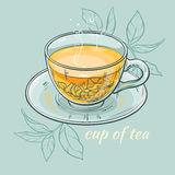 Cup of tea. Vector illustration with cup of tea on color background Stock Images