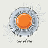 Cup of tea. Vector illustration with cup of tea on grey background Stock Photography