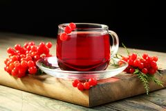 Cup of tea and viburnum berries. Royalty Free Stock Image
