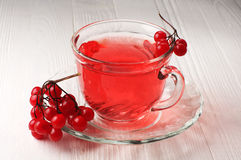 Cup of tea with viburnum berries Stock Image