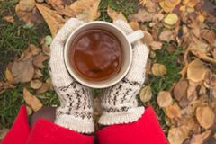 A cup of tea is a way to keep warm in cold weather. Cups with tea. Picnic in December. Yellow foliage. Romance in the park. Drinking tea in nature. Red plaid stock photo