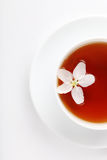 Cup of tea on a white background Royalty Free Stock Photos