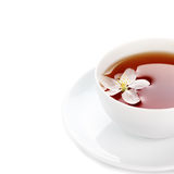 Cup of tea on a white isolated background Stock Photos