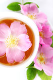 Cup of tea with wild rose. Cup of tea with flower wild rose royalty free stock images