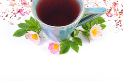 Cup of tea with wild rose flower on white background, copy space for text Stock Image