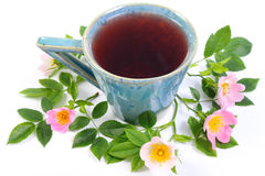 Cup of tea and wild rose flower on white background Royalty Free Stock Image