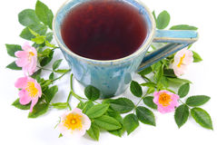 Cup of tea and wild rose flower on white background Royalty Free Stock Photography