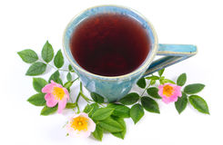 Cup of tea and wild rose flower on white background Stock Photography