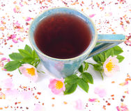 Cup of tea with wild rose flower on white background Royalty Free Stock Images