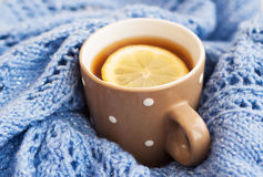 Cup of tea in the winter Stock Photography