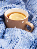 Cup of tea in the winter Royalty Free Stock Images