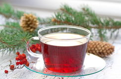 Cup of tea in winter Royalty Free Stock Photography