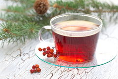 Cup of tea in winter Royalty Free Stock Images
