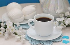 Cup of tea and zephyr Royalty Free Stock Photos