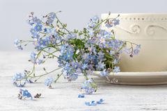 Cup of teand forget me not flowers on a wooden background Stock Image