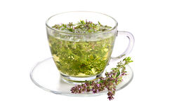 Cup of thyme tea Royalty Free Stock Photos