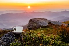 Cup in the mountains stock image