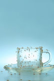 Cup und Saucer mit Ameisen Stockfotos