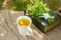 A cup of useful soothing chamomile tea, a bouquet of chamomiles and a book on a swing. Selective focus royalty free stock photos